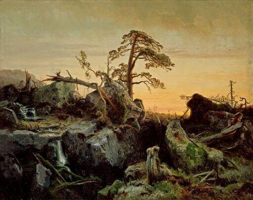 Utdøende urskog