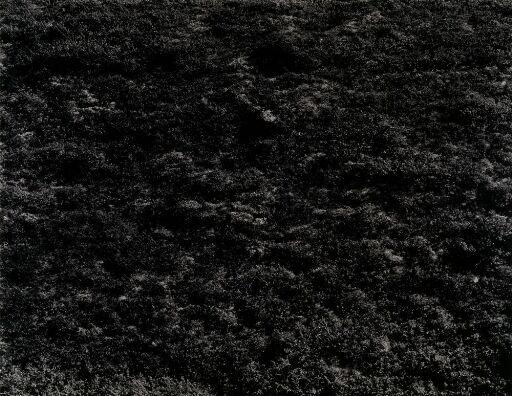 Landskap nr. 4, Eggedal 1985