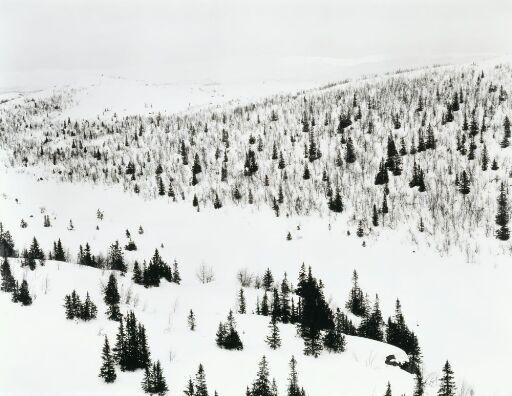 Utsikt nr. 1, Eggedal 1985