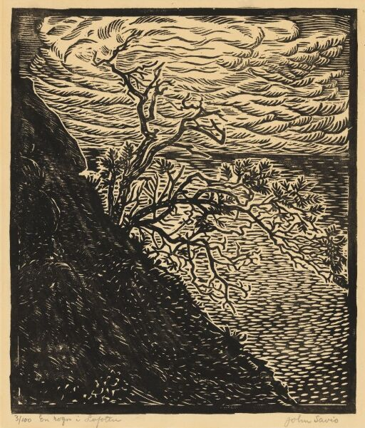 Rogntre i Lofoten