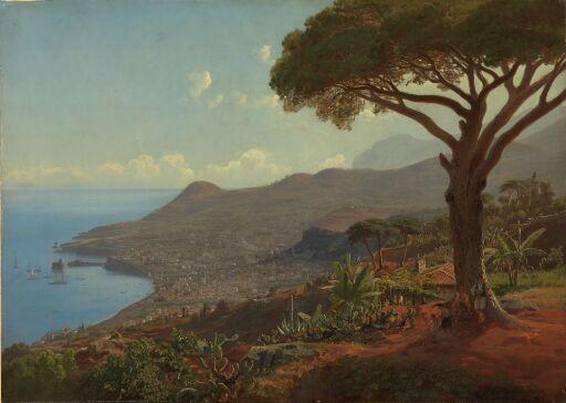 Utsikt over Funchal på Madeira