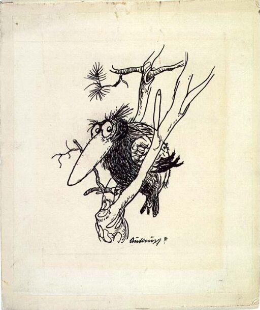 Svartkorp. Varselfugl som sitter i trærne og skriker - ofte i forbindelse med polstreiker