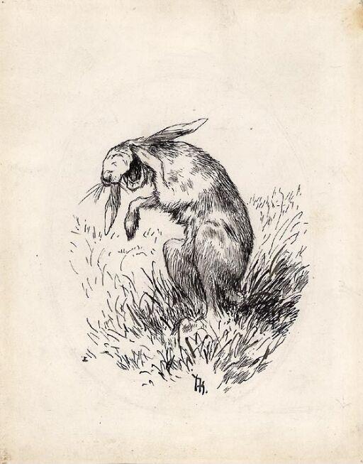 Haren lo så kjeften sprakk