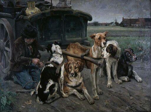 Flamsk hundeforspann