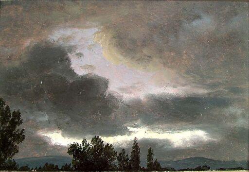 Dyster skyhimmel over svarte tretopper