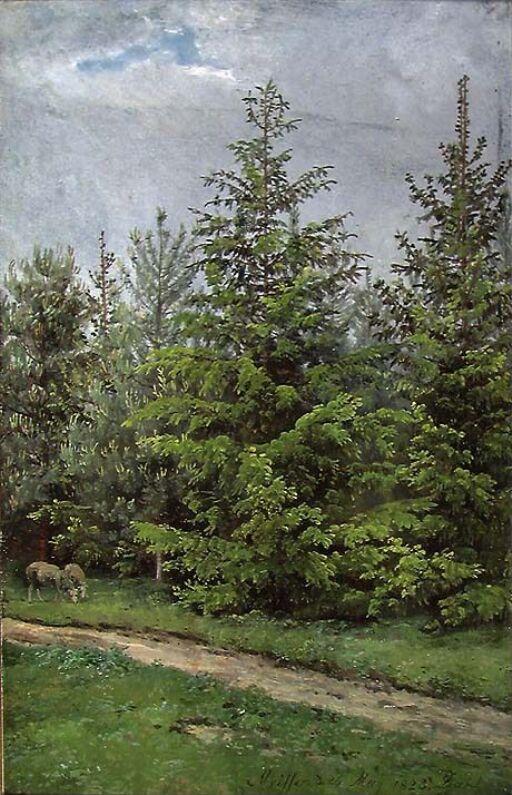 Skogsti nær Meissen