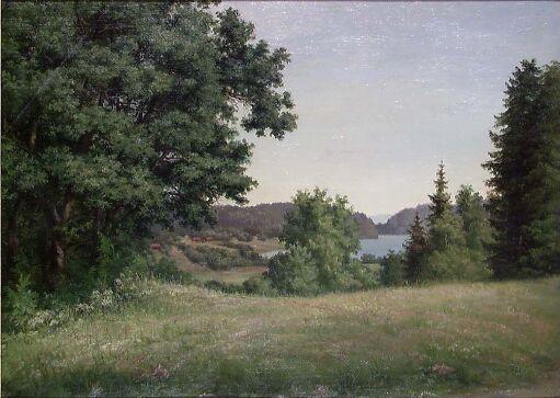 Landskapsstudie, Borrevannet