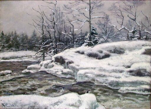 Vinter, Mesna