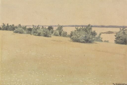 Meadow and Trees by the Sea