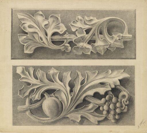 Ornament med blad og frukt