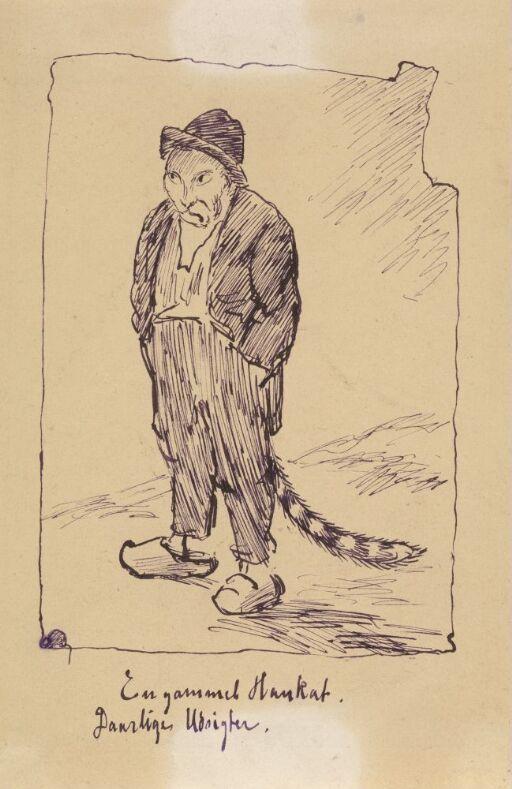 En gammel hannkatt