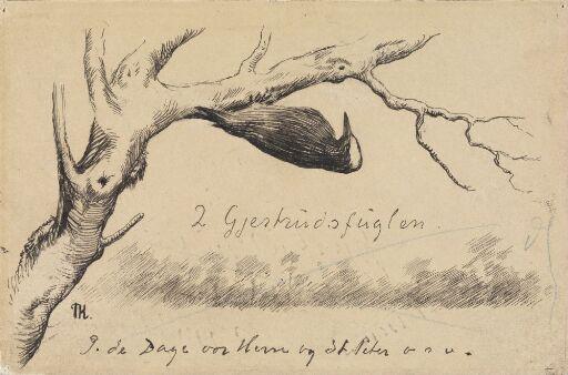 """Illustrasjon til """"Gjertrudsfuglen"""", P. Chr. Asbjørnsen og J. Moe, Eventyrbog for Børn. Norske Folkeeventyr, København 1883"""