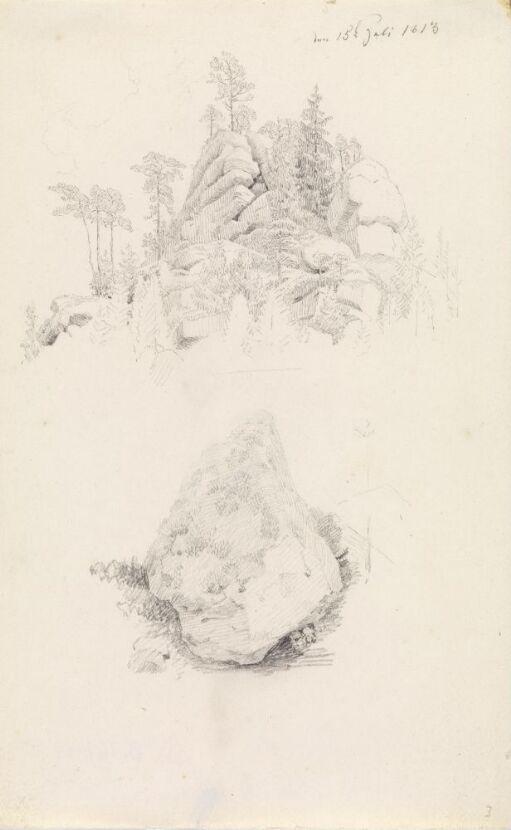 Klippetopp med trær; stor stein