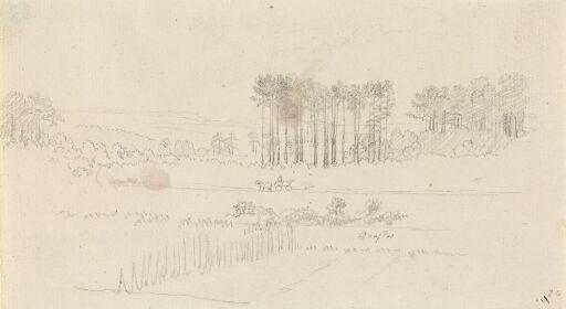Landschaft mit hohen Kiefern und Pferdewagen