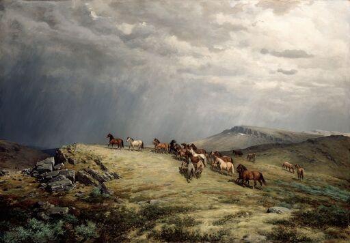 Hester på fjellet