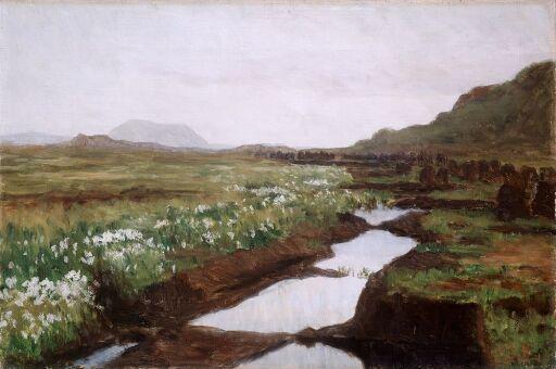 Study of a Peat Bog on Jæren