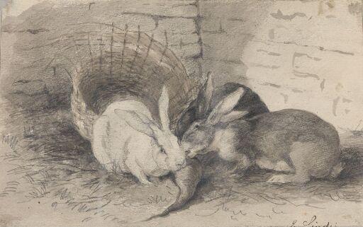 Tre kaniner