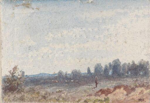 Figur i landskap