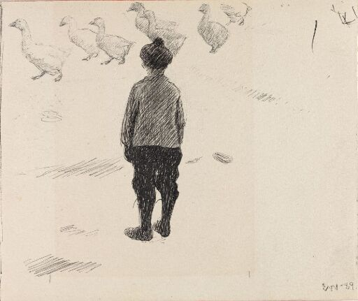 Boy looking at a Gaggle of Geese
