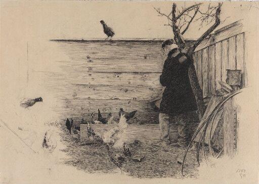 Mann i hønsegård