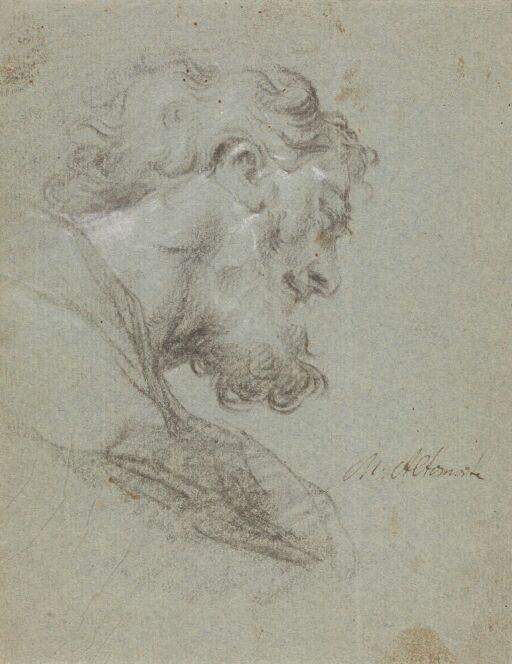 Hode av skjegget mann sett i profil