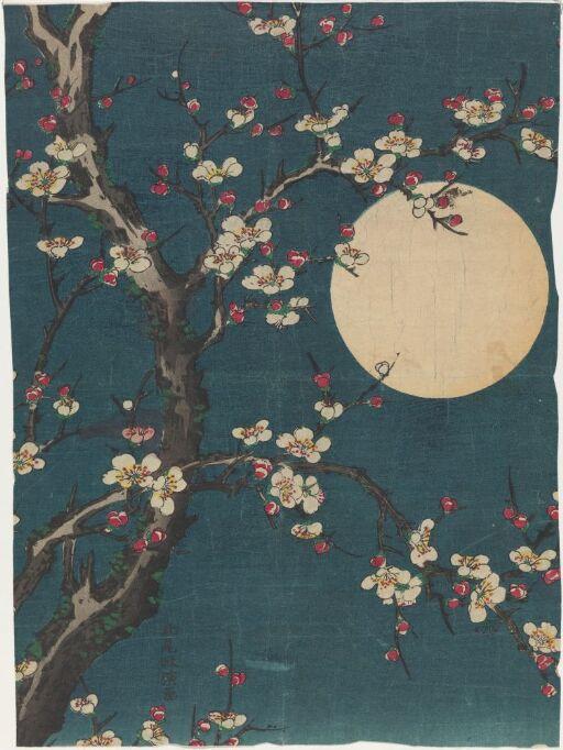 Blomstrende plommetre i fullmåne, kopi etter Kitao Masanobu