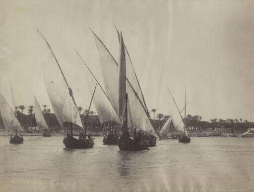 Voilers sur le Nil