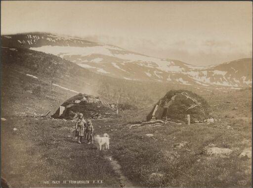 Parti af Tromsødalen