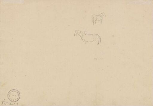 Riss av hester