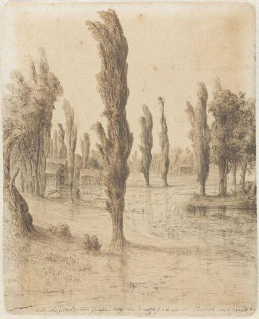 Landskap med popler