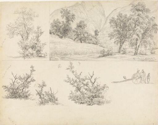 Romsdalshorn; fjellbjørk; orebusker; figurer ved kjerre