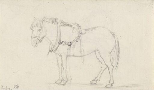 Påselet hest, Ørebro
