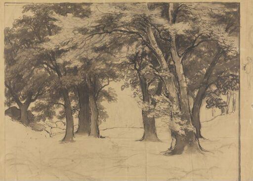 Trees, Rydal