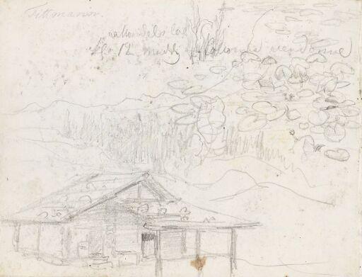 Hus i landskap; vannliljer
