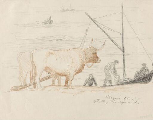 Oksespann og fiskebåter, Nazaré