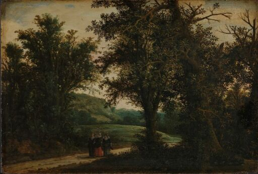 A Forest Landscape