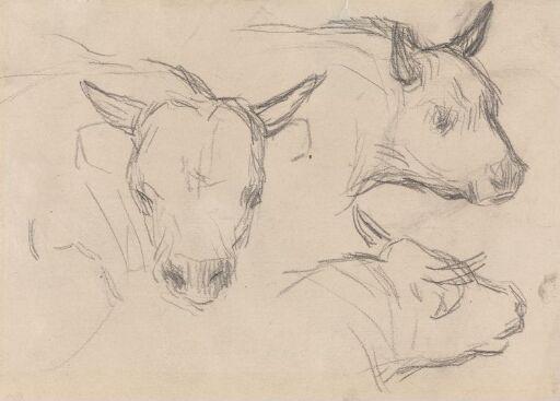 Tre kuhoder