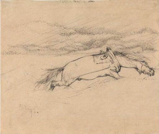 Hest som trekker