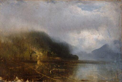Skogsvann med tåke