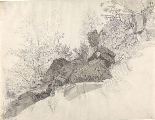 Trær og klipper i skråning