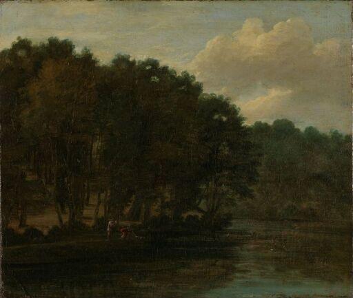 Skogsparti ved en sjø