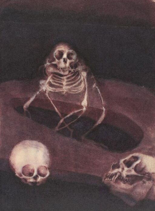 Skjelett og to skaller i mørkt rom