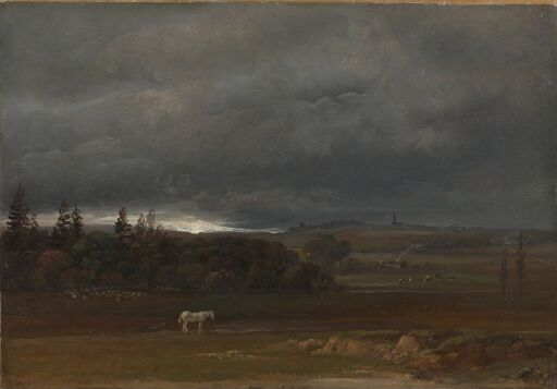 Fields near Dresden with a white Horse
