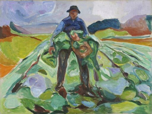Man in the Cabbage Field